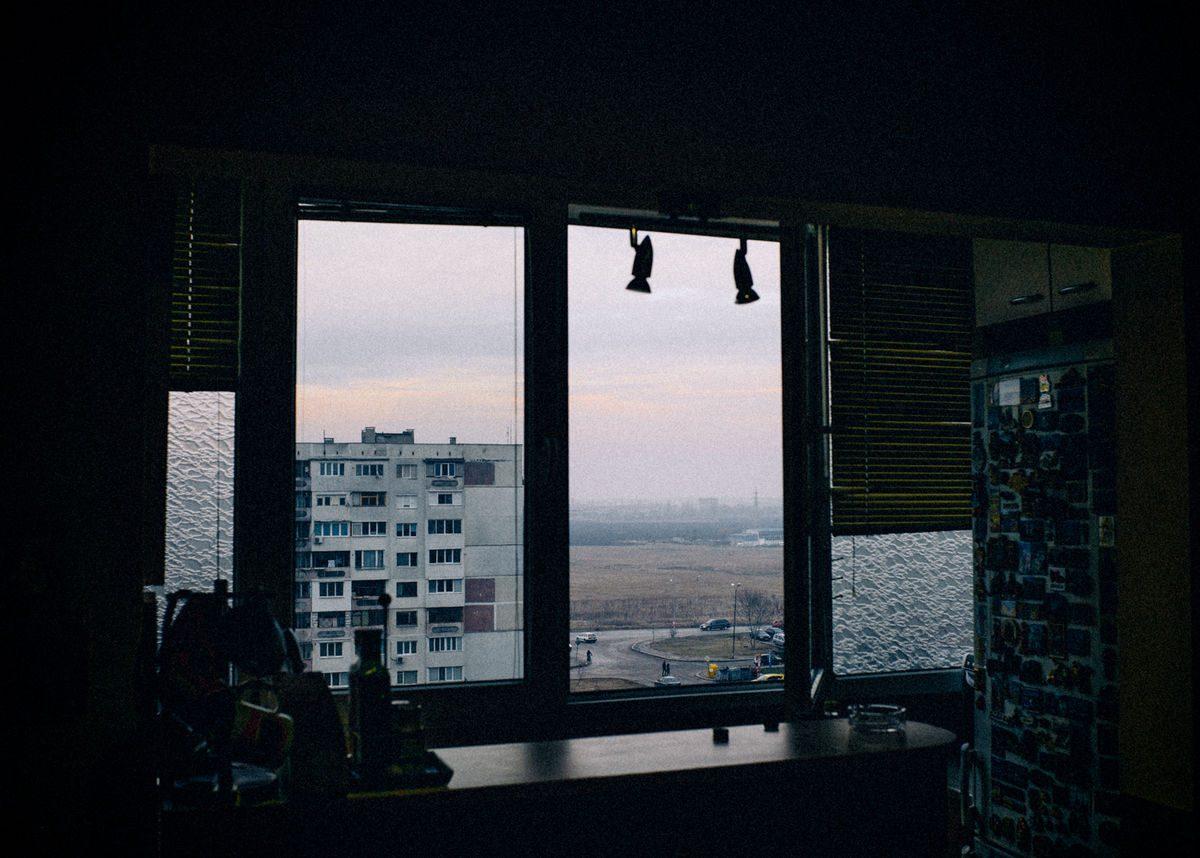 melancholy loves Obelia_kuhnia