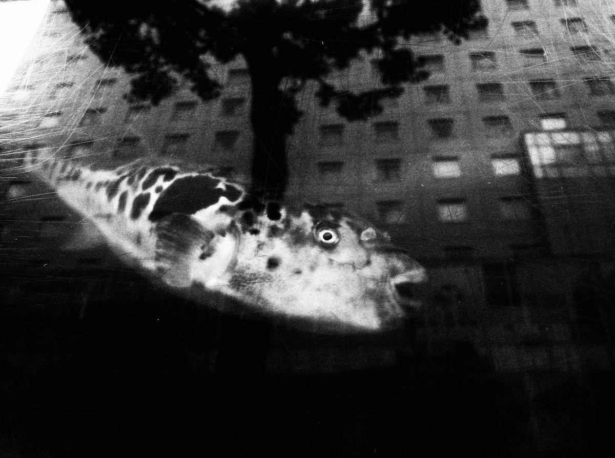 Ekin-Küçük-6_street-photography