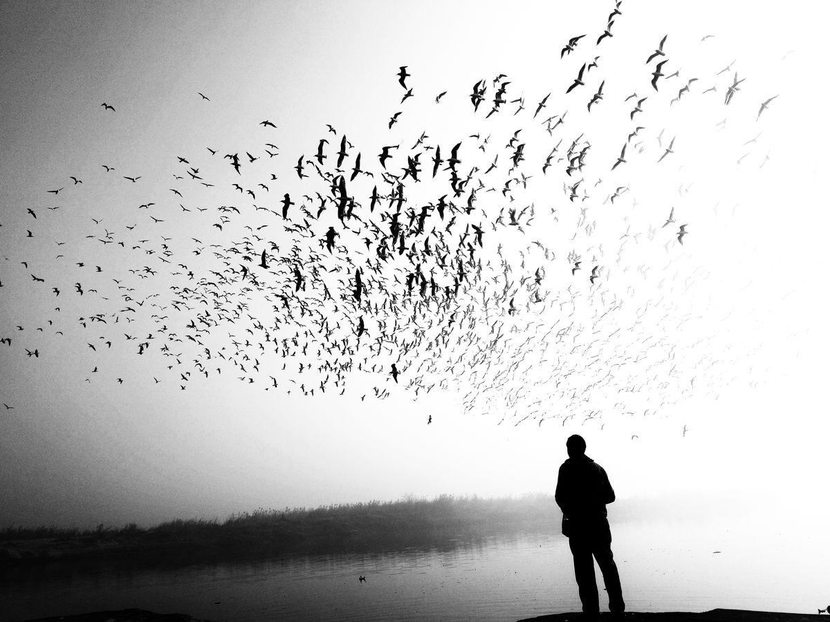 Ankit-Kumar-1_street-photography